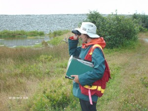 Bird surveys, Smith Point, Nova Scotia